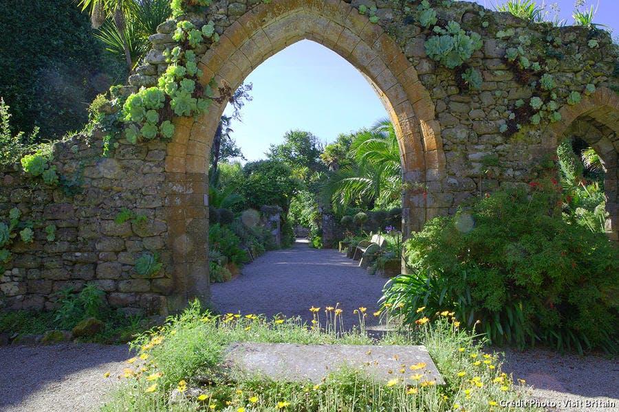 djweb_jardinanglais_silly.jpg