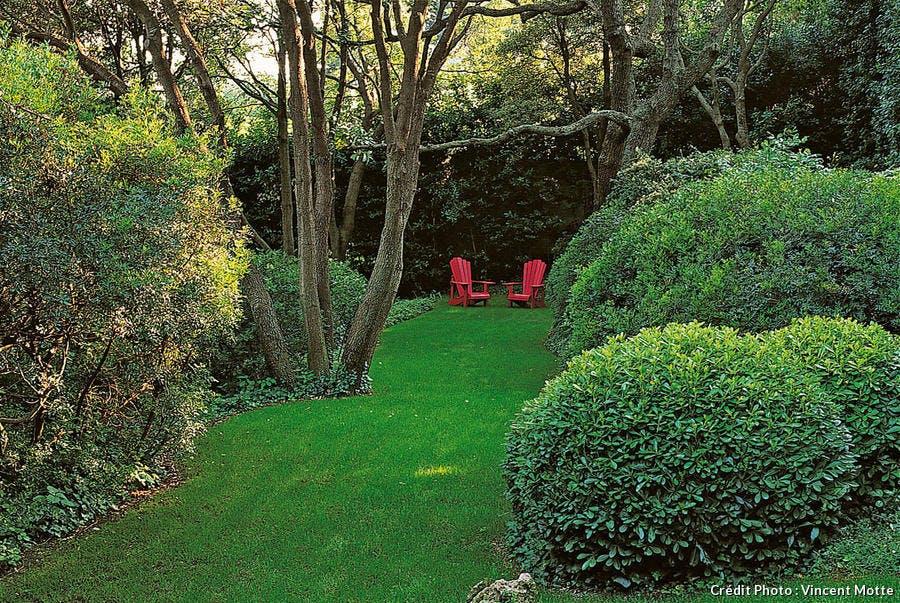 Jardin méditerranéen avec plantes et arbustes