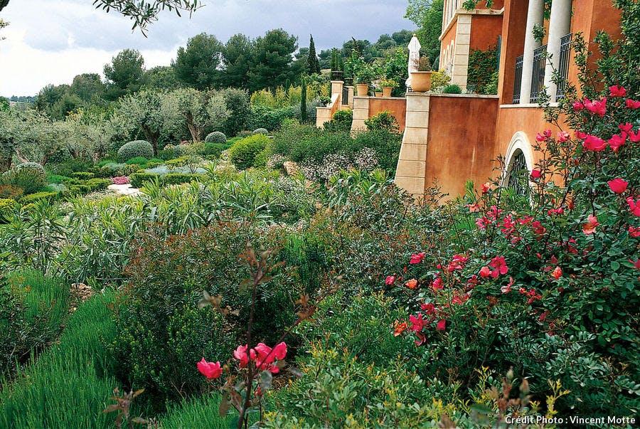 Jardin provençale en climat méditerranéen