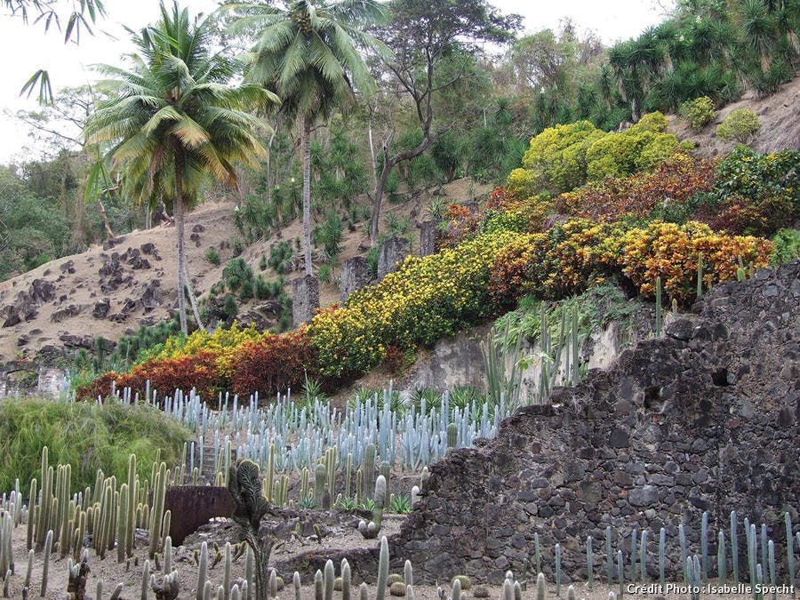 L'habitation Hanse-Latouche en Martinique