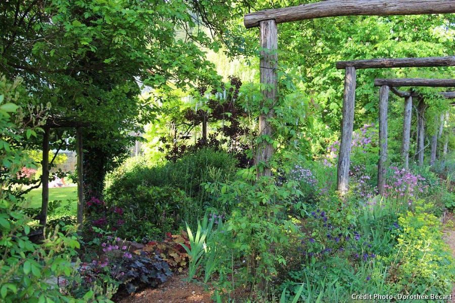 La roseraie du jardin de mon moulin