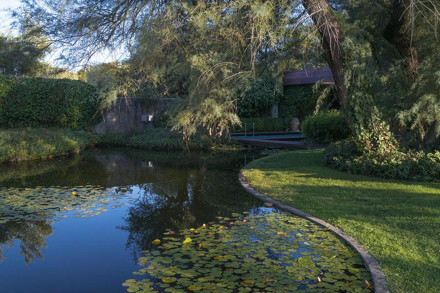 djweb_pietroporcinai_3_il_giardino_con_piscina_di_villa_margaret_-_corciano_perugia_1969-78_.jpg