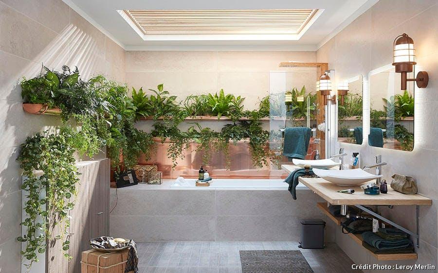 Gouttières botaniques dans une salle de bains