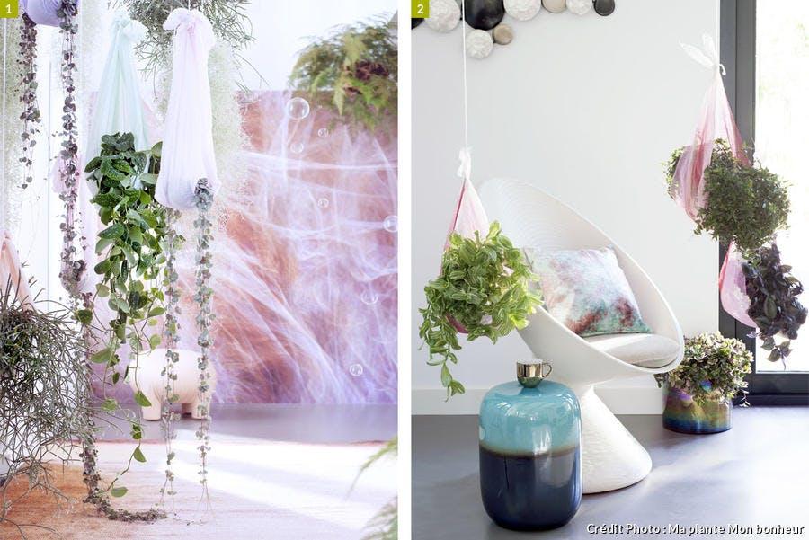 Cascade de végétation dans une chambre