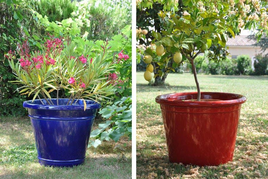 Pots Et Cache Pots Xxl Voyez Grand Pour Vos Plantations