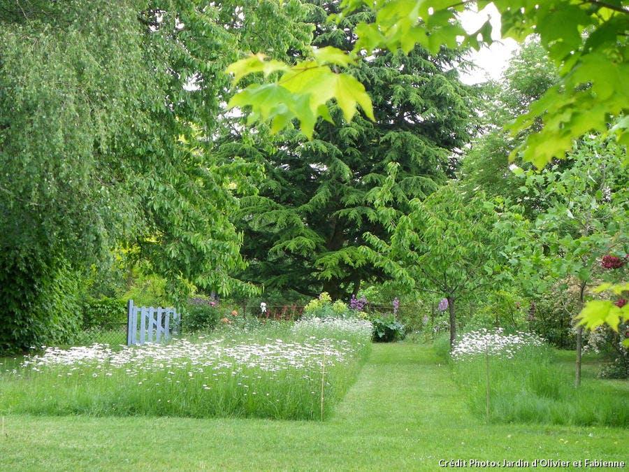 Le jardin d'Olivier et Fabienne