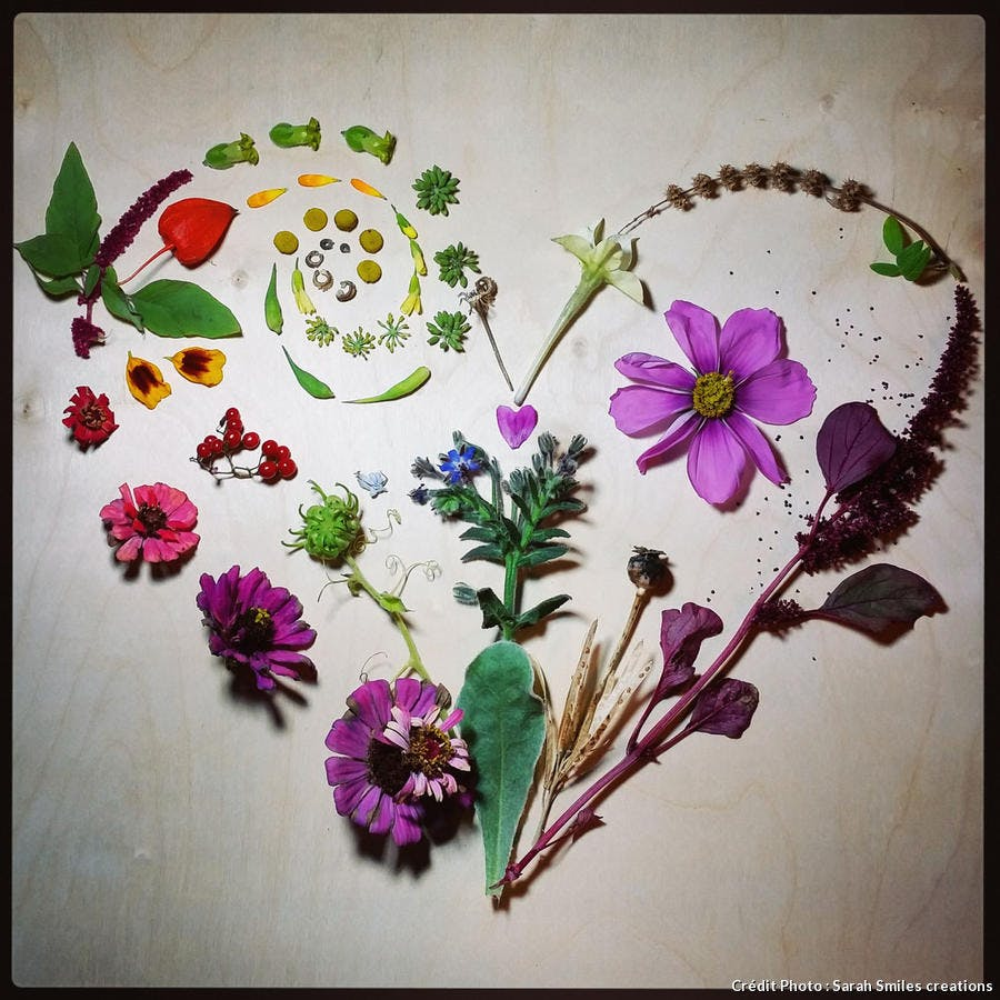 Summer Flower Heart