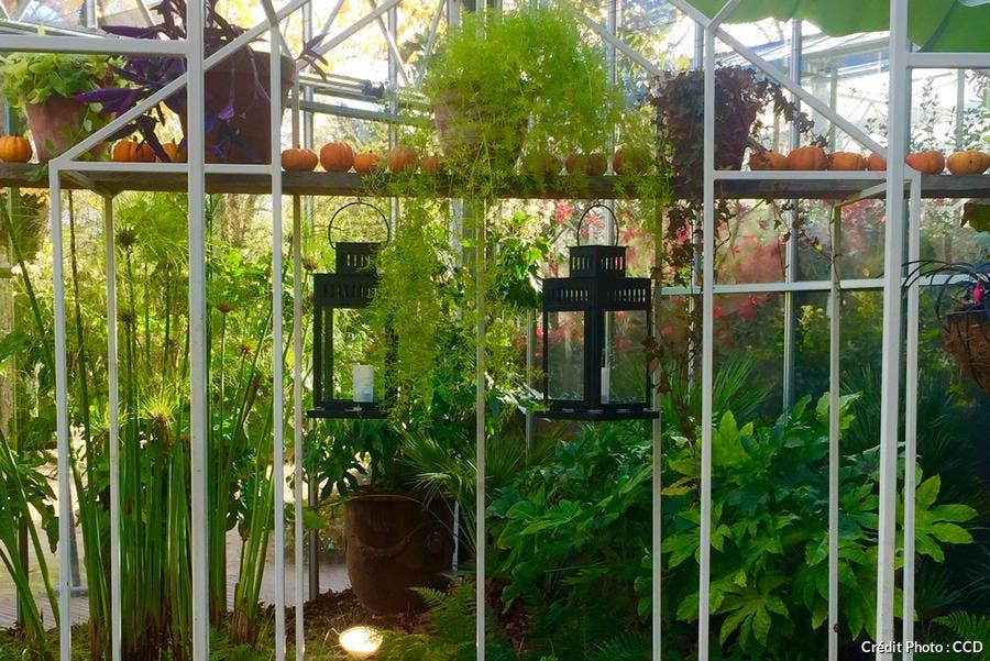 jardin-dhiver-chaumont-sur-loire1.jpg