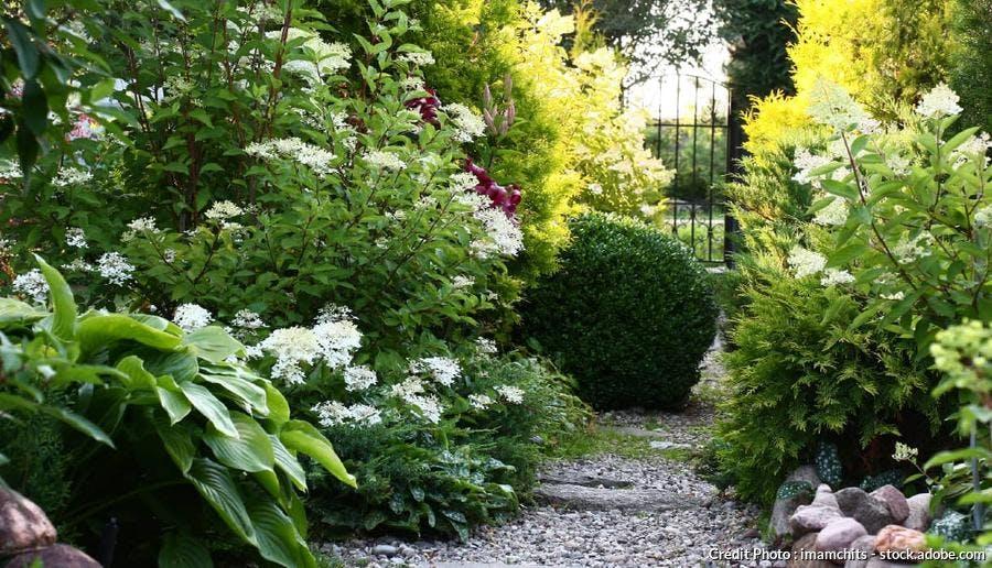 jardin ombre