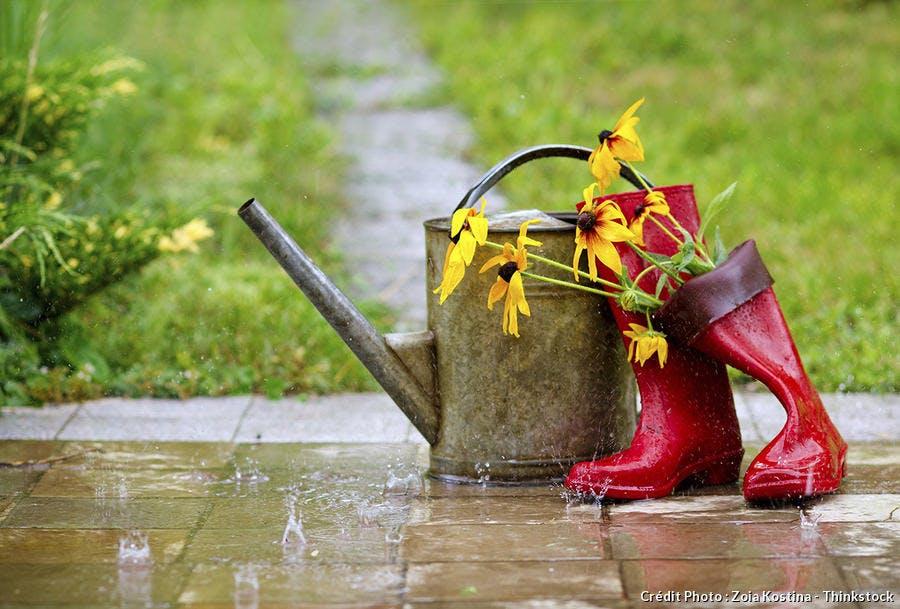 Jardin sous la pluie