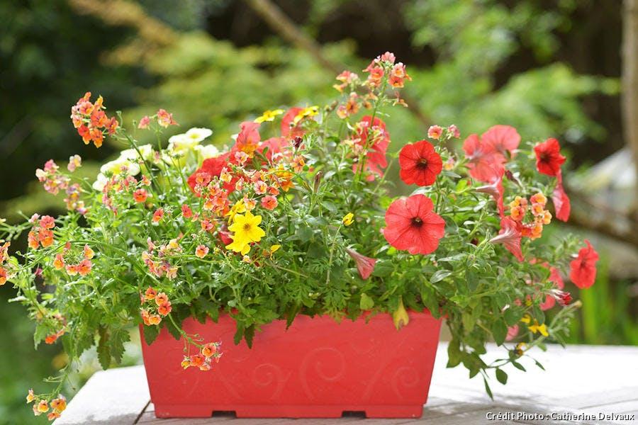 jardinière rouge