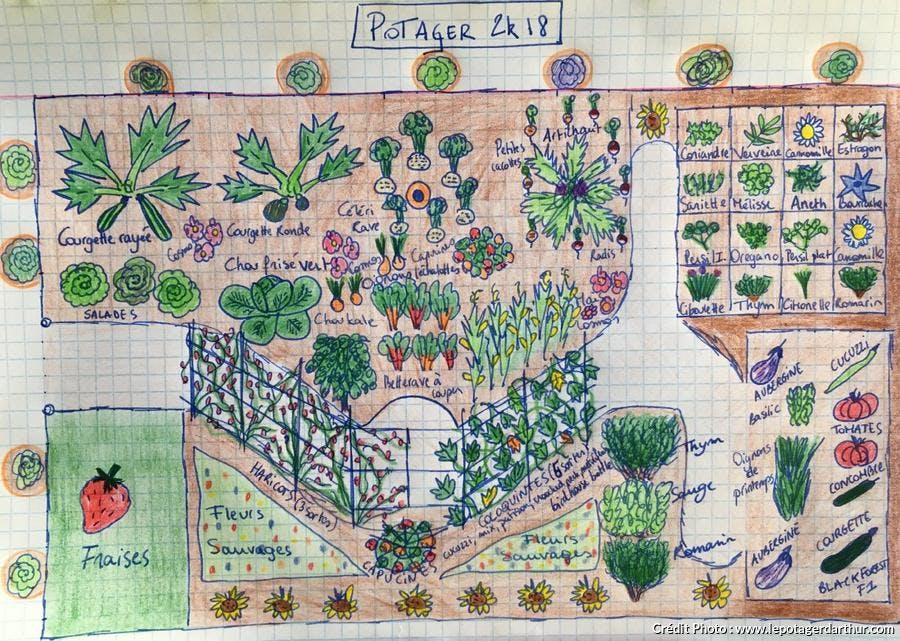 Plan du potager