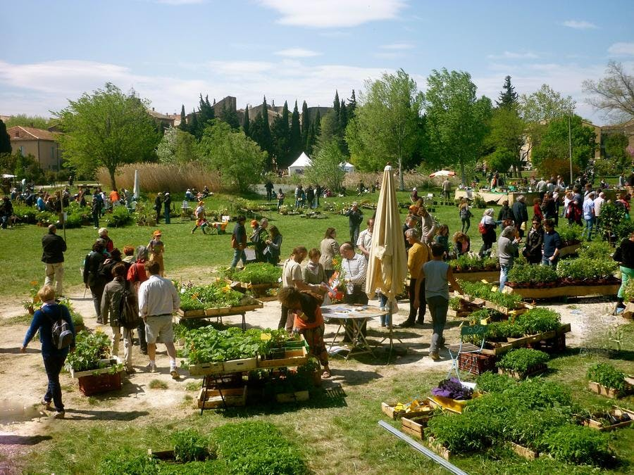 plantes-rares-et-jardin-naturel-7.jpg