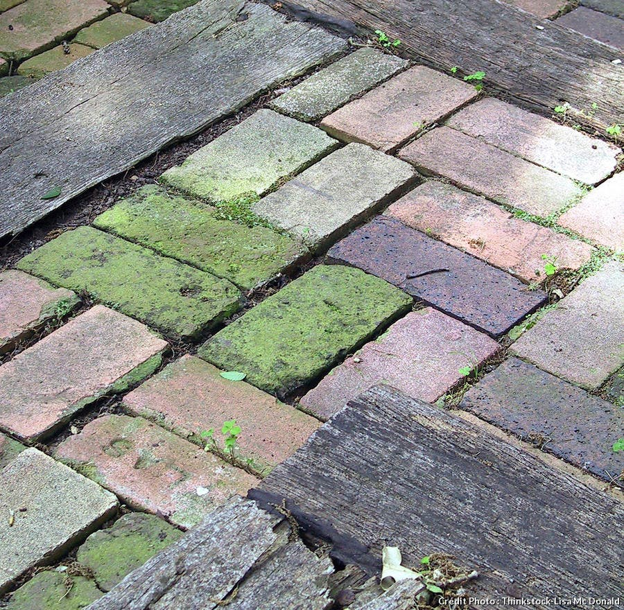 Bicarbonate De Soude Pour Terrasse les bienfaits du bicarbonate de soude - détente jardin
