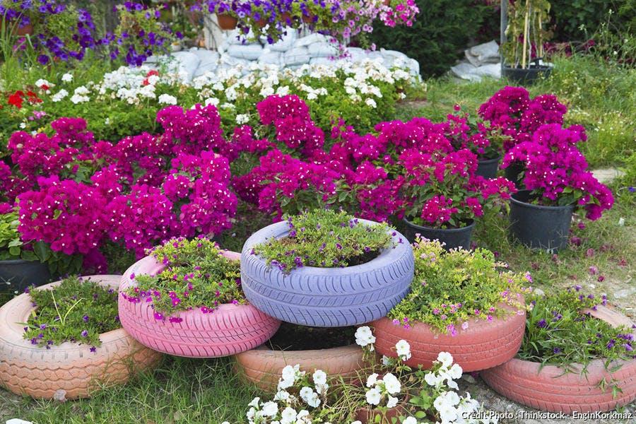 Pneu récup jardin