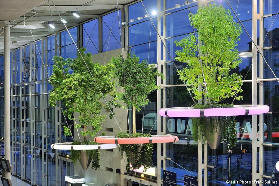 dja-jardin-suspendu-gare-anger-alexis-tricoire-credit-studio_erick_saillet.jpg