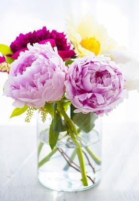 12 astuces pour des beaux bouquets qui durent longtemps
