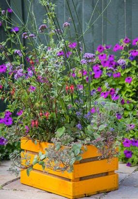 Créer une jardinière fleurie pour les abeilles