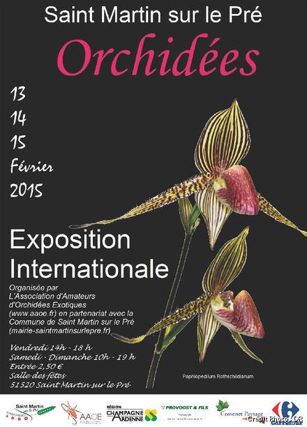 DJ Affiche stmartin_orchidees.jpg