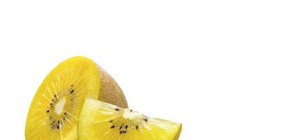 Kiwi Minkigold