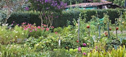 Le jardin de Fanny