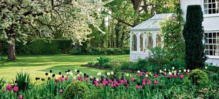 pelouse semer gazon planter du gazon entretien pelouse. Black Bedroom Furniture Sets. Home Design Ideas