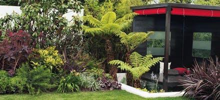 Jardin exotique en ville