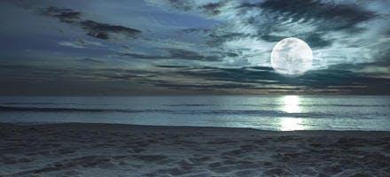 Lune et marée