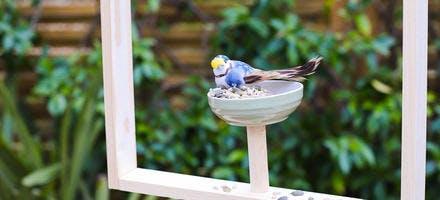 mangeoire à oiseaux Sader