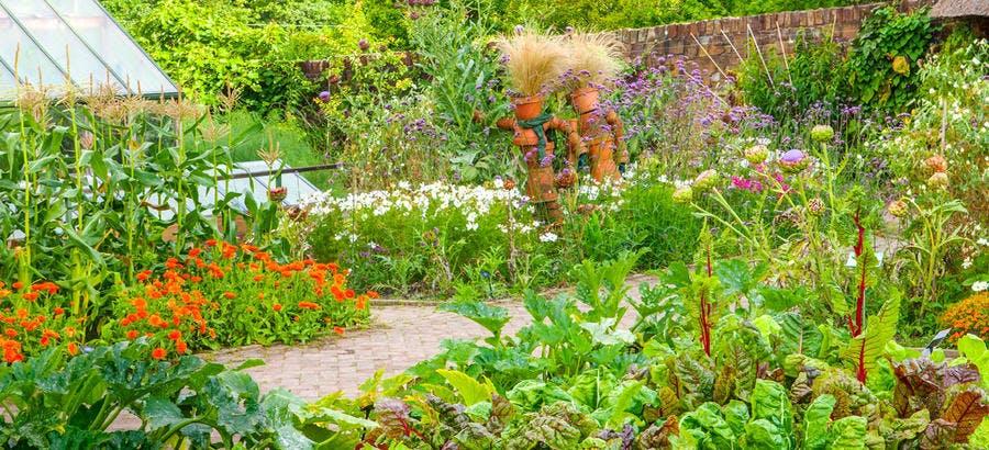 Panorama du jardin