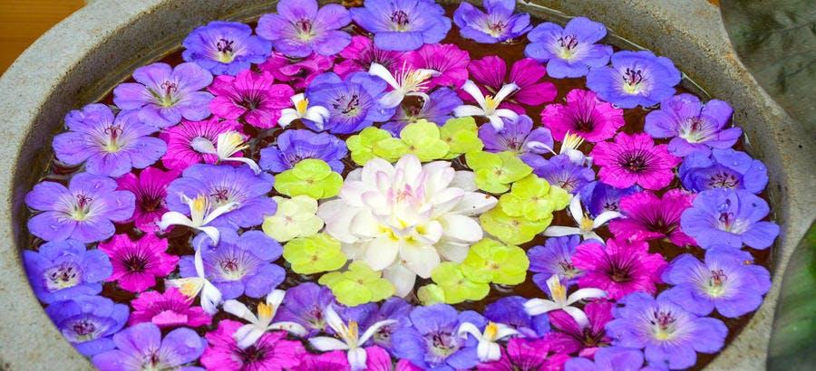 Rosace fleurie