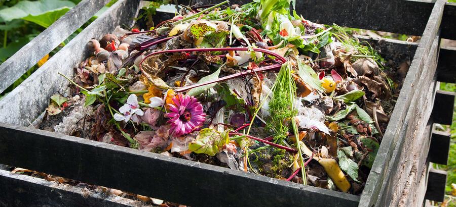 Tas de compost dans un jardin avec fleurs et épluchures