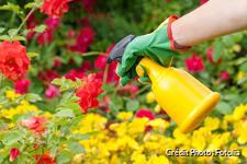 Insecticide naturel pour plantes