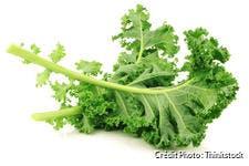 Feuille de chou kale