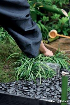 Entretien d'un jardin japonais