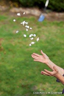 Lancer de bulbes