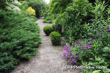 Jardin de la Loire