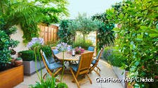 Un jardin sur terrasse
