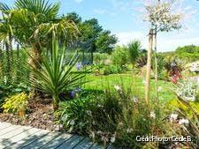 jardin breton au look exotique