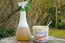 Recette du savon insecticide