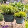 Pots de fleurs dans des chaudrons